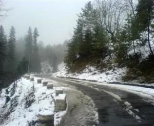 Kalka Shimla Taxi Service